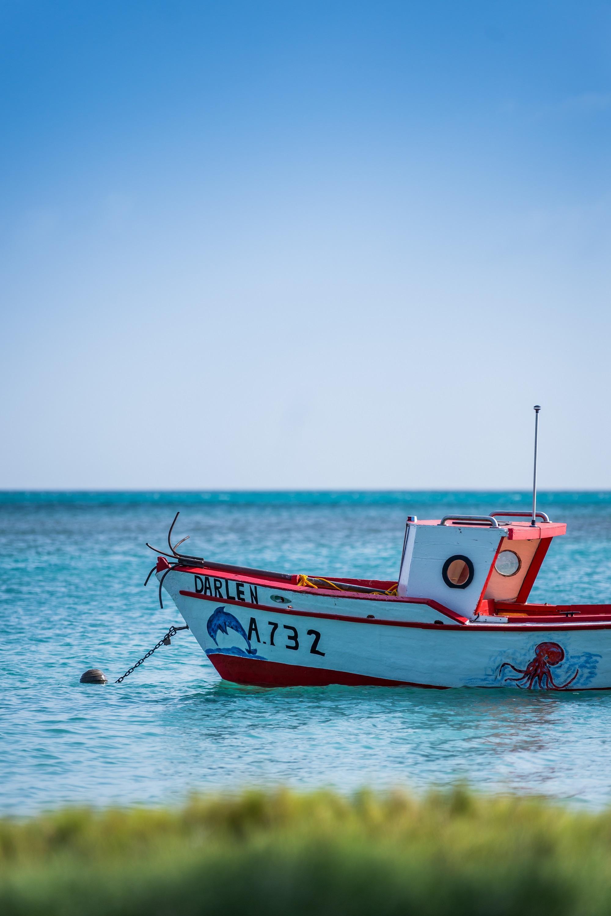 Servizio di incontri Aruba